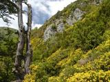 Balade à la Pene Hourque - Pyrenees
