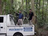 RARE SPECIES AT MT. MAKILING. There are not many wild bird photographers in the Philippines.  Jeff Carig is lucky to shoot two of them (with a Sony FD 95) on this day...8-)   The 4x4 truck of Maxikrete Philippines, Inc. (my company) serves as a mobile shooting platform for birds along the trail.