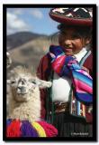 Girl with Llamas, Cusco, Peru