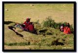 In the Cusco Highlands, Peru