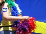 boston pride flag feathers.jpg