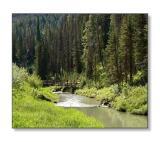 Alpine StreamCaribou Nat'l Forest, ID