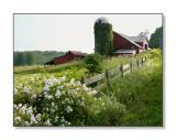 Rural SceneAusterlitz, NY