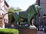 Art Institute Lions