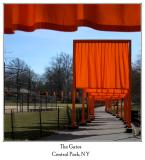 The Gates ~ Christo and Jeanne-Claude