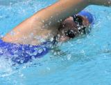 MVP Dolphins Swim Team - July 3, 2004