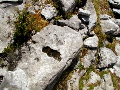 Burren stones
