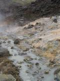 Steam rising from geyser pools
