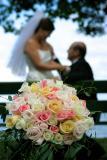 Wedding of Angie and Richard