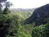 St Lucia Landscape