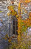 Window of the Sleeping Beauty/Csipkerózsika ablaka