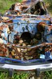 Abandoned Car - 2