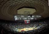 basketball01jpg.jpg