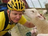 Wool jerseys are better!