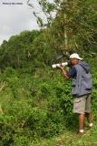I aim at a tamsi (Cebuano for sunbirds/flowerpeckers) at  Maraag, Sudlon II, Cebu Province, a few minutes drive from Tabunan.