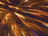 Firework1 Crop