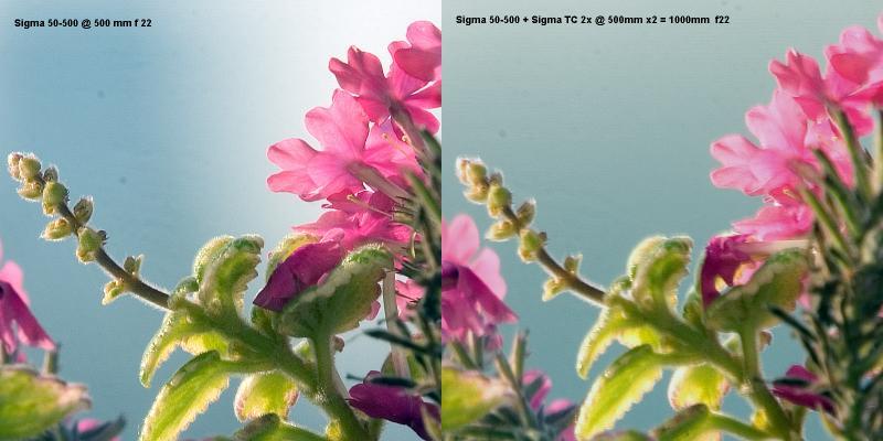 Plain 500mm vs 500mm + 2x TC