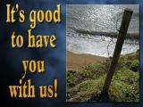 'It's good to have you…' slide from the 'Hive beach' series