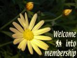 'Into membership' slide from 'Paignton flowers' series