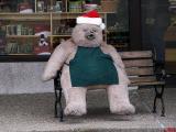 Christmas Bear.jpg(246)