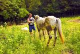 88CU0224 Mike & horse