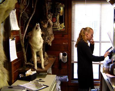 Silent Howl, Walker, California, 2004
