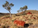 Pannawonica - North Western Australia
