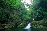 cachoeira do maximiliano. Mata Atlântica em Iporanga-SP