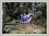 Sangkimah Kutai National Park Kaltim