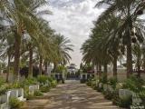 Le Souf (El Oued)