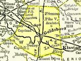 Wayne CO. NC Map 1895 (Boyett, NC)