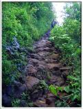 Kalalau Trail - Rocks & Mud (Lots of it!)
