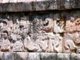 Maya's warrior