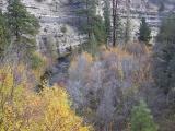 Whychus creek