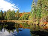 Trestle Pond