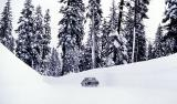 Mount Lassen, CA1982/12/23kbd0673