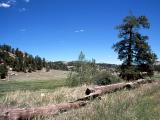 Cripple Creek (11).jpg