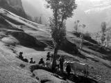 Gavarnie, travaux des champs