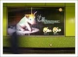 best advert in HK