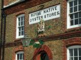 Oyster Stores