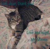 Mr. Minnie