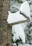 Snow Mohawk
