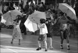 Trio of Umbrellas