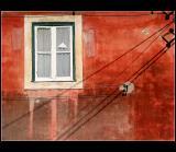 17.11.2004 ... Strong colour ...