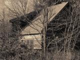 Cabin Sepia
