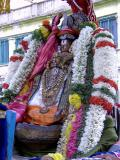 Peyazhwar2