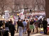 Central Park Rally