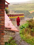 Lone monk in Langmusi