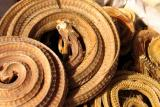 Dried snakes