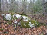 Granite with Moss